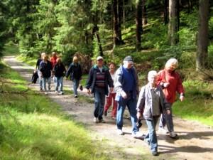 Waldwege in den Harburger Bergen